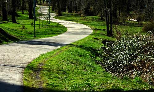 Caminho tortuoso