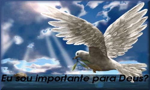 Pomba branca voando e a pergunta: EU SOU IMPORTANTE PARA DEUS?
